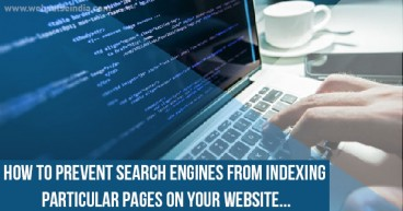 How to Prevent Search Engines from Indexing Particular Pages on your Website